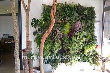 Photos Et Images De Realisation De Mur Vegetal Et Toit Vegetal